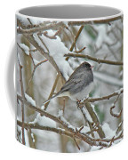 Dark-eyed Junco - Snowbird Coffee Mug