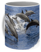 Dolphins Leaping Coffee Mug