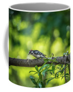 Downy Woodpecker In The Wild Coffee Mug