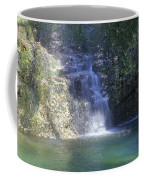 Dripping Springs Falls Coffee Mug