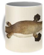 Duck-billed Platypus Ornithorhynchus Coffee Mug