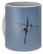 Eastern Kingbird Coffee Mug