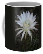 Echinopsis  Coffee Mug
