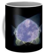 2 Faced Fishy Coffee Mug by Tim Allen