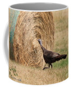 Female Eastern Wild Turkey Coffee Mug