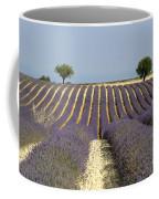 Field Of Lavender. Provence Coffee Mug