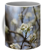 Flowering Trees Coffee Mug