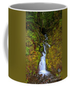 Streaming In The Olympic Rainforest Coffee Mug