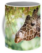 Giraffe Feeding On Green Leaves Of Lettuce Coffee Mug