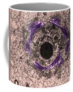 Golgi Zone, Tem Coffee Mug