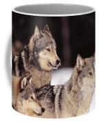 Gray Wolves Coffee Mug