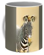 Grevys Zebra, Samburu, Kenya Coffee Mug