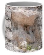 Grupo Nohoch Mul At The Coba Ruins  Coffee Mug