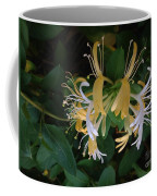 Honeysuckle Vine Coffee Mug