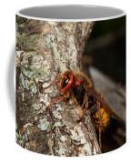 Hornet Vespa Crabo Coffee Mug
