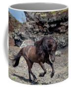 Icelandic Black Stallion, Iceland Coffee Mug