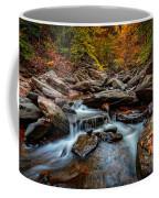 Kaaterskill Creek Coffee Mug