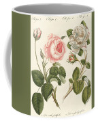 Kinds Of Roses Coffee Mug