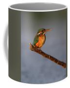 Kingfisher Coffee Mug