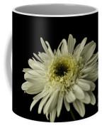 Leucanthemum Highland White Dream Coffee Mug