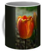 2 Lips Coffee Mug