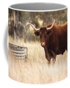 Longhorn Cow In The Paddock Coffee Mug