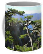 Look At The Pine Trees And The Lake Coffee Mug