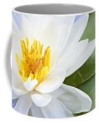 Lotus Flower Coffee Mug by Elena Elisseeva