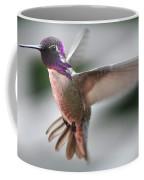 Male Anna's In Flight Coffee Mug