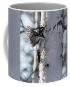Male Hairy Woodpecker Coffee Mug