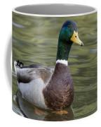 Mallard Drake Santa Cruz Monterey Bay Coffee Mug