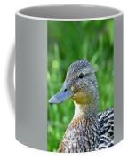Mallard Duck Hen Coffee Mug