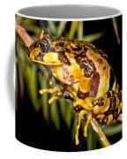 Marbled Wood Frog Coffee Mug