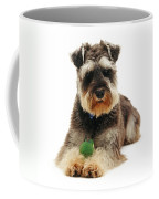 Miniature Schnauzer Coffee Mug by Jane Burton