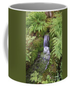 Mossy Waterfall Coffee Mug