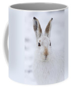 Mountain Hare In The Snow - Lepus Timidus  #3 Coffee Mug