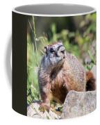 Mr. Marmot Coffee Mug