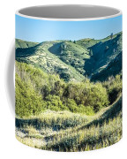 Muir Woods Forest Drive By Nature Near San Francisco Coffee Mug