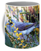 Noisy Miner In Oz Coffee Mug