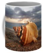 North Shore Seashell Coffee Mug