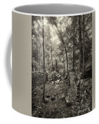 Old Stone Fort Coffee Mug