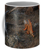 Orange Iguana Coffee Mug