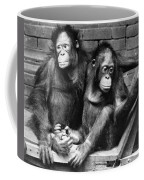 Orangutans Coffee Mug