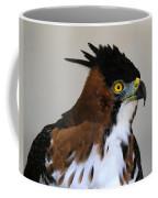 Ornate Hawk-eagle Coffee Mug