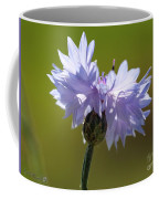 Pale Blue Bachelor Button From The Double Ball Mix Coffee Mug