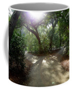 2 Paths  Coffee Mug