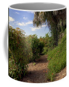 Pelican Island In Florida Coffee Mug