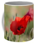 Poppies In Field In Spring Coffee Mug