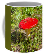 Red And White Potted Toadstool Coffee Mug