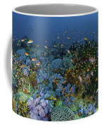 Reef Scene With Coral And Fish Coffee Mug by Mathieu Meur